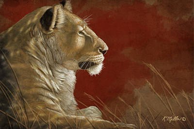 Lioness In The Shade Poster by Kathie Miller