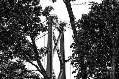 Lions Gate Between The Trees Mono Poster by John Rizzuto