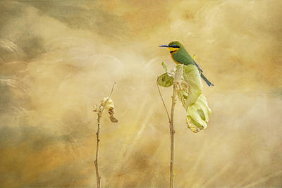 Poster featuring the tapestry - textile Little Bee-eater by Kathy Adams Clark