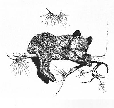 Little Black Bear Cub Poster