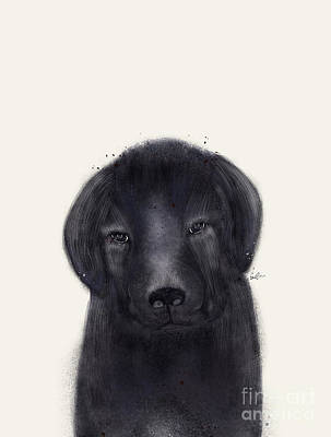 Poster featuring the painting Little Black Labrador by Bri B