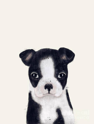 Poster featuring the painting Little Boston Terrier by Bri B