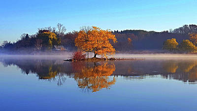 Little Cedar Lake Poster by Phil Koch