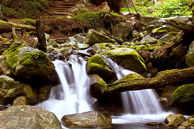 Poster featuring the photograph Little Creek Falls by Gary Brandes