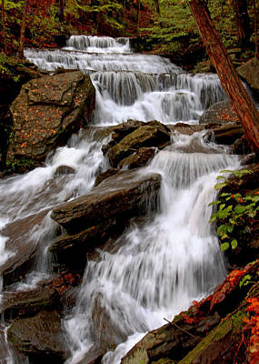 Poster featuring the photograph Little Four Mile Run Falls by Suzanne Stout