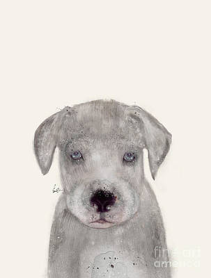 Poster featuring the painting Little Great Dane by Bri B