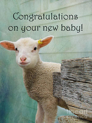 Little Lamb New Baby Greeting Poster by Nina Silver