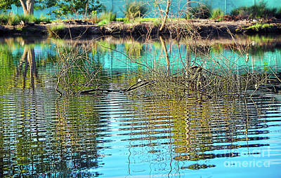 Poster featuring the photograph Little Ripples By Kaye Menner by Kaye Menner
