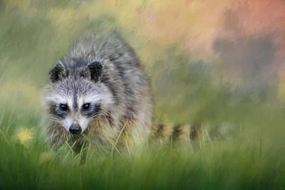 Little Wash Bear Raccoon Art Poster