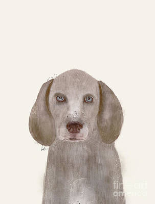 Poster featuring the painting little Weimaraner by Bri B