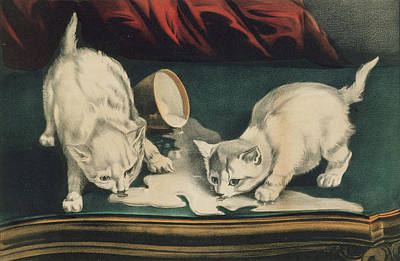 Poster featuring the painting Little White Kitties Into Mischief                                                      by Matthias Hauser
