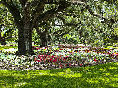 Poster featuring the photograph Live Oaks At Brookgreen Gardens by Bill Barber