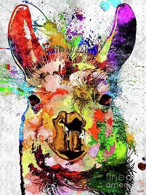 Llama Grunge Poster by Daniel Janda