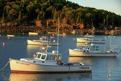 Poster featuring the photograph Lobster Boats At Bar Harbor Me  by Emmanuel Panagiotakis