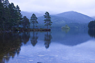 Loch Garten In The Cairngorms Scotland Poster by Gabor Pozsgai