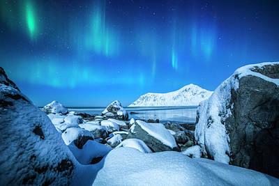 Lofoten Aurora Poster by Stefano Termanini