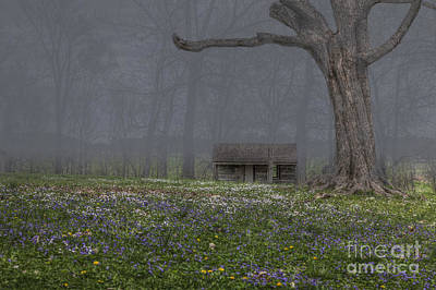 Log Cabin At Mckendree's Chapel Poster by Larry Braun
