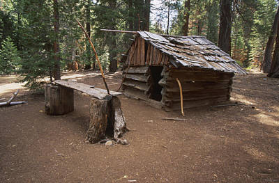 Log Cabin Poster by Soli Deo Gloria Wilderness And Wildlife Photography