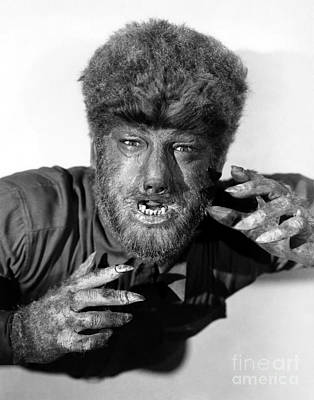 Lon Chaney As The Wolfman Poster by Pd