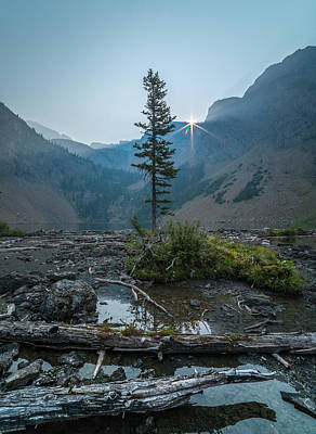 Poster featuring the photograph Lone Survivor // Bob Marshall Wilderness  by Nicholas Parker