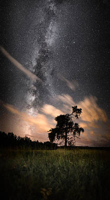 Lone Tree, Milky Way, Late Summer Poster