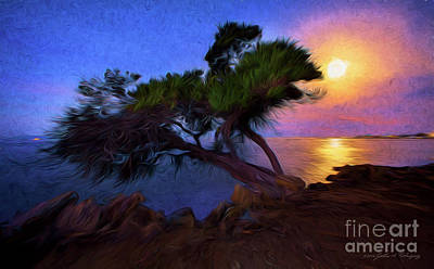 Lone Tree On Pacific Coast Highway At Moonset Poster
