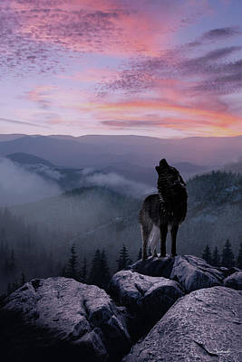 Lone Wolf At Sunset Ridge Poster by IM Spadecaller