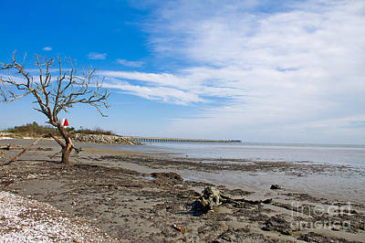 Poster featuring the photograph Lonely Beach At Christmas by Sandy Adams