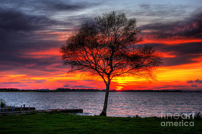 Lonesome Sunset  Poster by Kim Shatwell-Irishphotographer