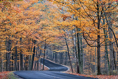 Long And Winding Autumn Road Poster