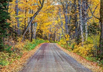 Long And Winding Autumn Roads North Shore Minnesota Poster