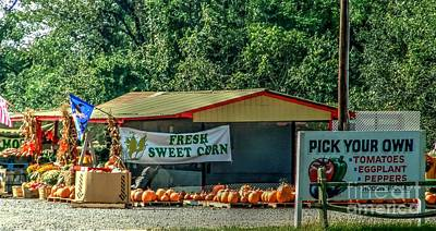 Long Island Farmstand/farm Poster by Terry McCarrick