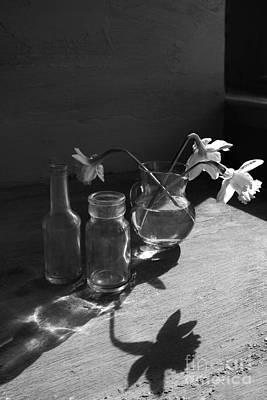 Long Shadows Poster by Elena Nosyreva