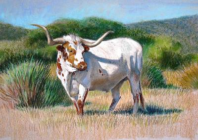 Poster featuring the painting Longhorn Bull by Sue Halstenberg