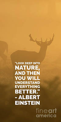 Look Deep Into Nature Phone Case Poster