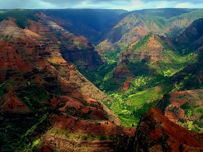 Looking Into Waimea Canyon Poster by Connie Handscomb
