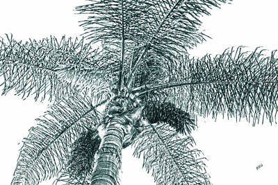 Looking Up At Palm Tree Green Poster by Ben and Raisa Gertsberg