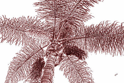 Looking Up At Palm Tree Red Poster by Ben and Raisa Gertsberg