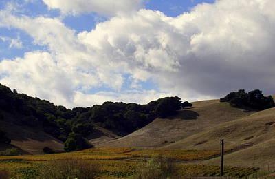 Looming Field Of Sonoma Poster by Deborah  Crew-Johnson