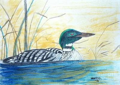Loon On The Lake Poster