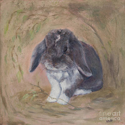 Lop Eared Rabbit- Socks Poster
