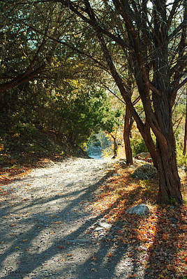 Poster featuring the photograph Lost Maples State Park Path 4 by Karen Musick