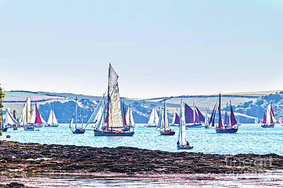 Lots Of Yachts Poster by Terri Waters