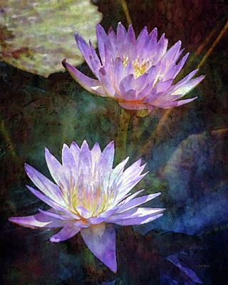 Lotus Reflections 2980 Idp_2 Poster