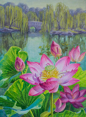 Lotuses In A Chinese Garden 1 Poster by Fiona Craig