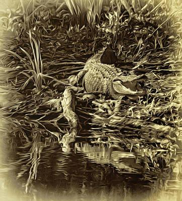 Louisiana Bayou 3 - Sepia Poster by Steve Harrington