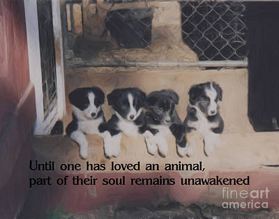 Love For Animals Poster by Smilin Eyes  Treasures
