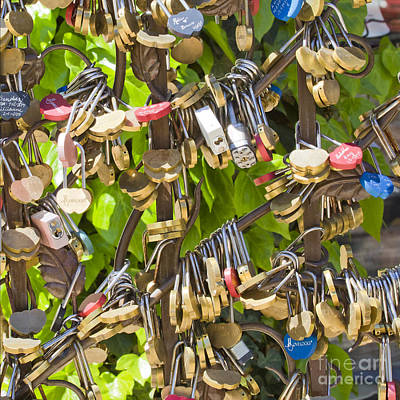 Poster featuring the photograph Love Locks Square by Chris Dutton