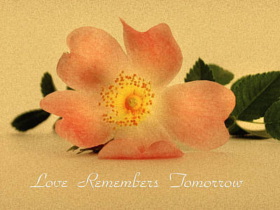 Love Remembers Tomorrow Poster