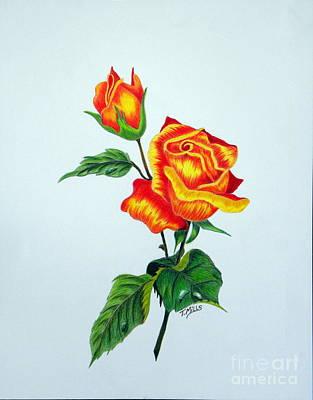 Lovely Rose Poster
